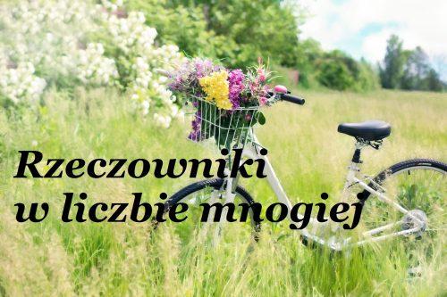 Blog językowy - nauka języka angielskiego - odmiana rzeczowników w liczbie mnogiej