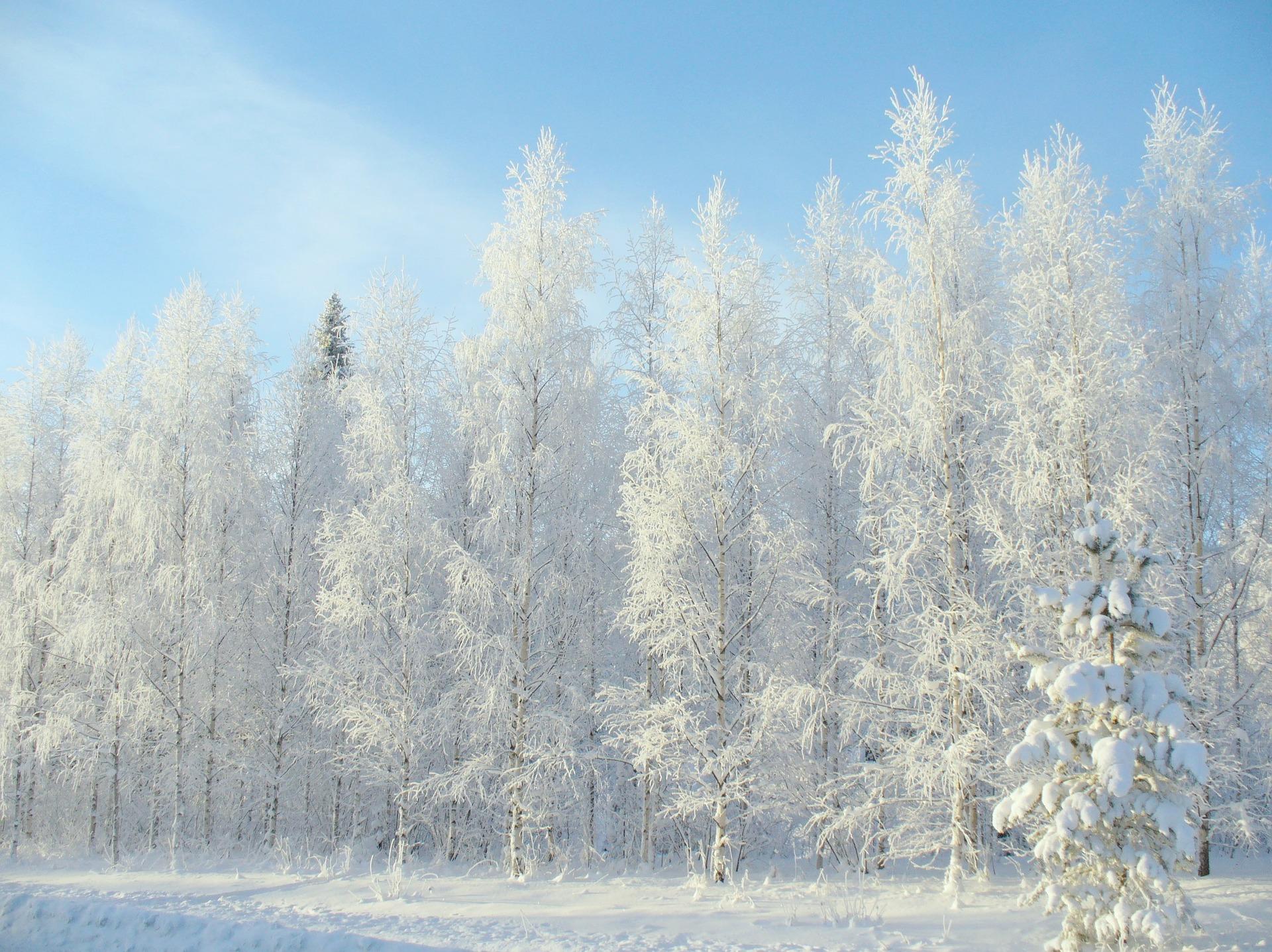 Idiomy angielskie związane z zimą - Blog o języku angielskim - as pure as the driven snow